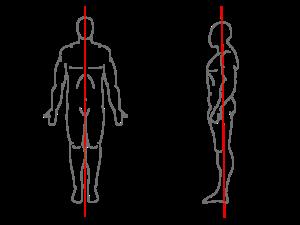 vertical central line